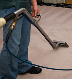 clean carpeting service