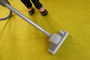 Carpet Cleaning 53