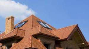 professional roofing contractor 1